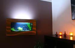 Aquarium design type plasma
