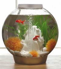 Aquarium design Biorb modèle boule